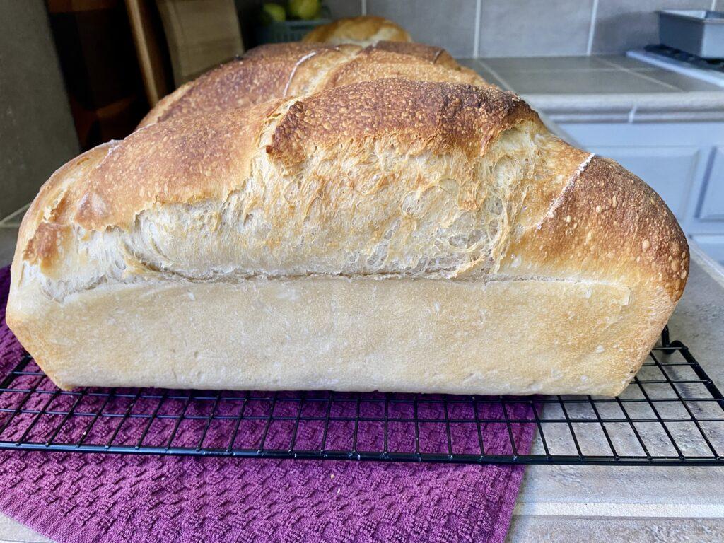 large loaf of sourdough bread