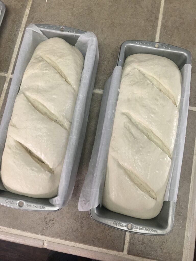 sourdough bread ready to be baked in the oven.