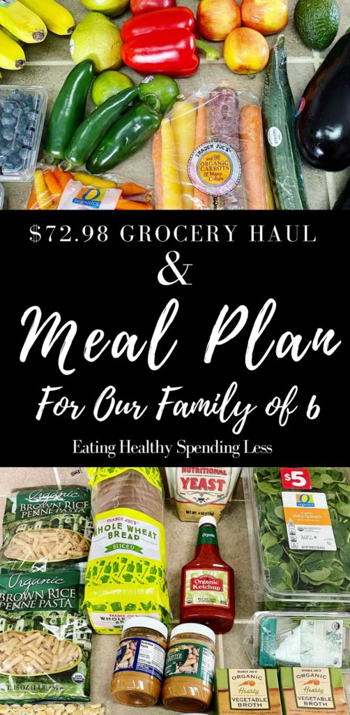 budget grocery haul and meal plan